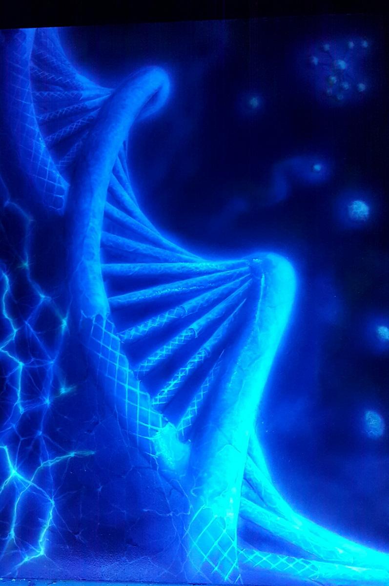 10 Gen sieciowy 2