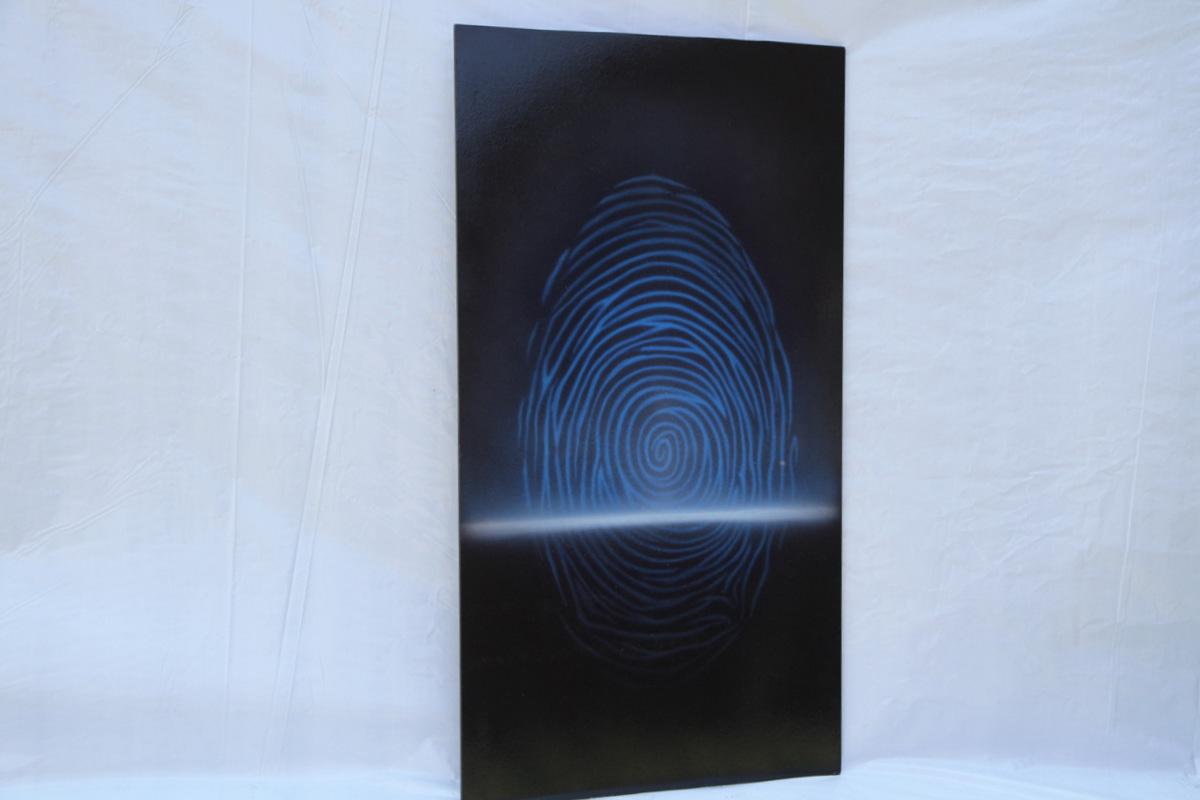 10 biometria