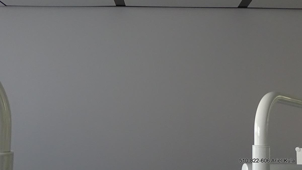 Malowane loga w gabinecie, mural w biurze