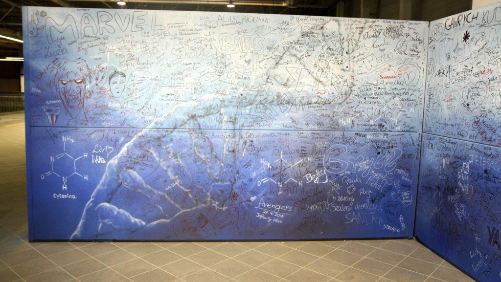 Malowanie obrazu na invencie fantastyki, mural na festiwalu